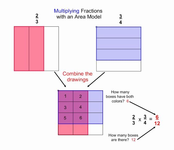 Multiplying Fractions Using Models Worksheet Awesome as I Have Stated Operations Of Fractions Can Be E