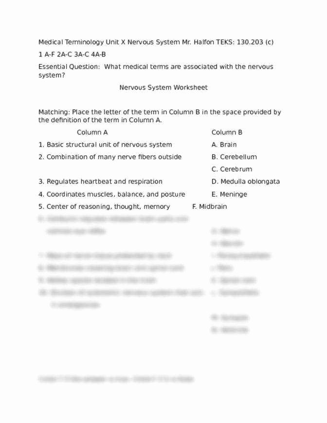 Nervous System Worksheet High School New Medical Terminology Worksheet