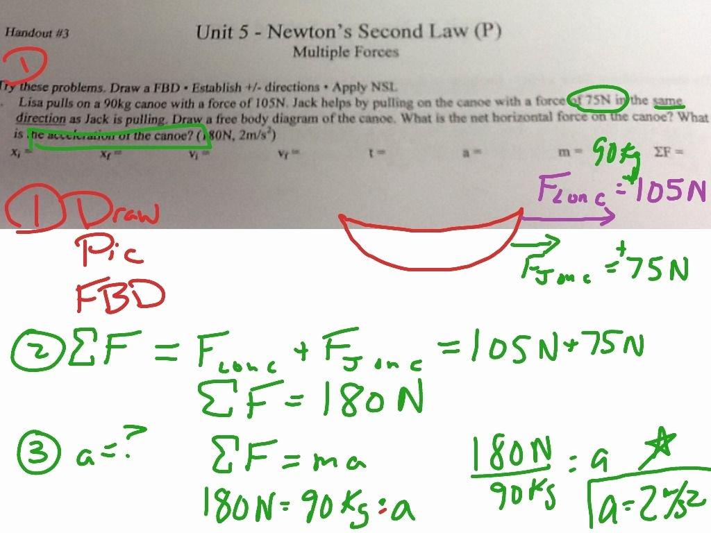 Newton's Laws Review Worksheet Answers Unique Newton S Second Law Motion Worksheet Answers Physics