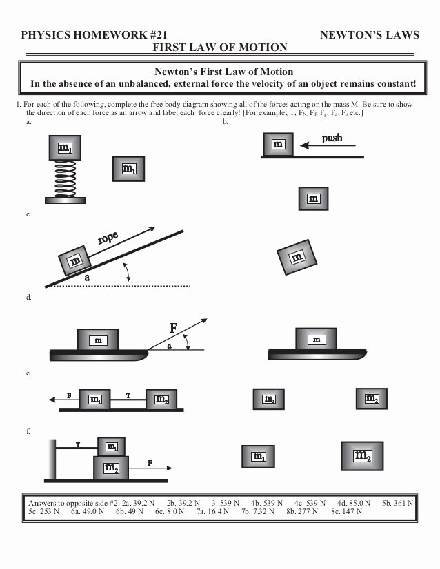 Newton's Laws Worksheet Answers Lovely Home Worksheets Review