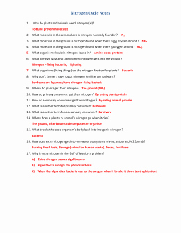 Nitrogen Cycle Worksheet Answer Key Beautiful Studylib Essys Homework Help Flashcards Research