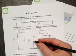 Nitrogen Cycle Worksheet Answers Elegant Free Biology Revision Nitrogen Cycle Worksheet by