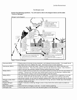 Nitrogen Cycle Worksheet Answers New Nitrogen Cycle Worksheet