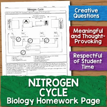 Nitrogen Cycle Worksheet Answers Unique Free Nitrogen Cycle Biology Homework Worksheet by Science