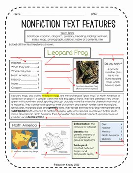 Nonfiction Text Features Worksheet Beautiful Nonfiction Text Features assessment by Kinney Kreations