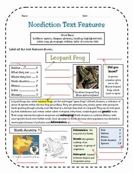 Nonfiction Text Features Worksheet Unique Nonfiction Text Features assessment