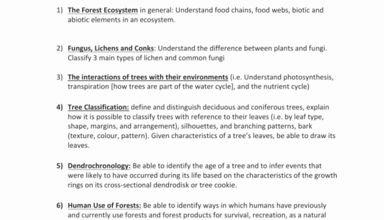 Nutrient Cycles Worksheet Answers Awesome Unbelievable Nitrogen Cycle Worksheet Answer Key