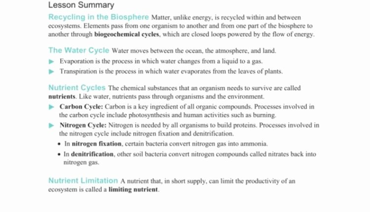 Nutrient Cycles Worksheet Answers Best Of the Latest Template Of Section Worksheetdified W