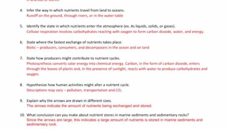 Nutrient Cycles Worksheet Answers Elegant Amazing Nutrient Cycles Answer Key E Example From by