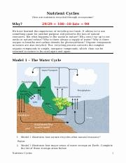 Nutrient Cycles Worksheet Answers Luxury Nutrient Cycles Water Cycle Answers Nutrient Cycles How
