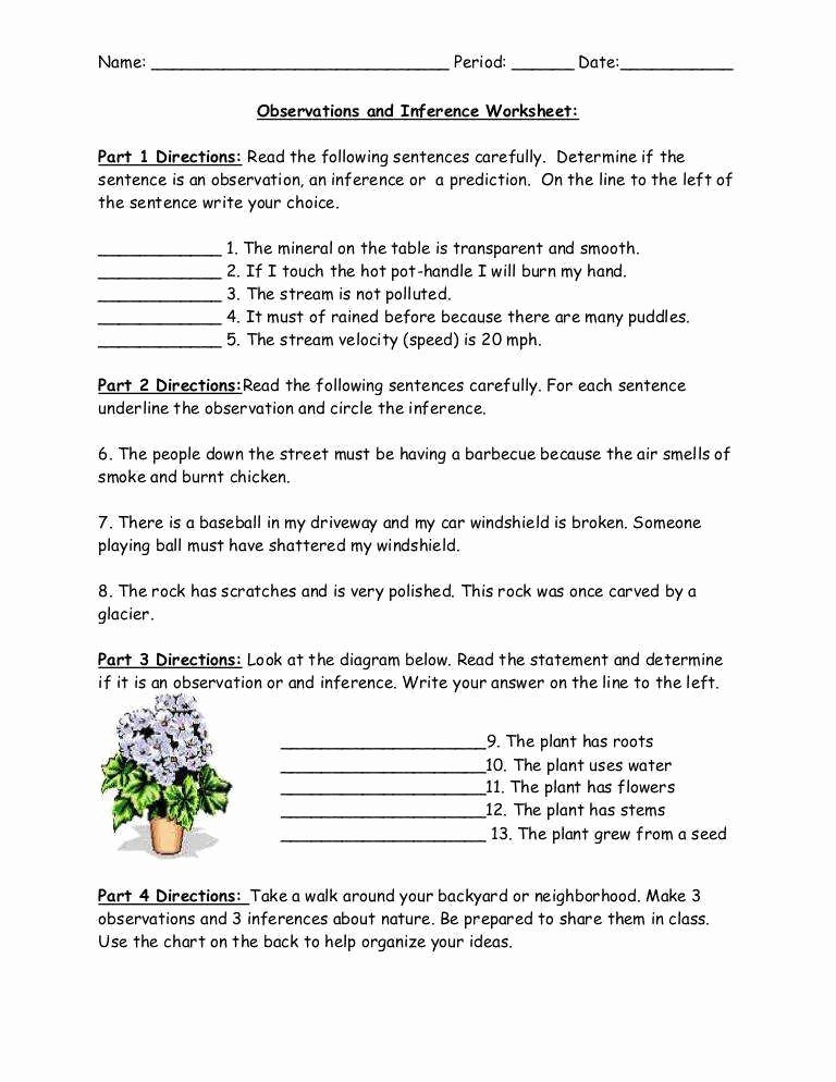 Observation and Inference Worksheet Beautiful Inferences Worksheet 1