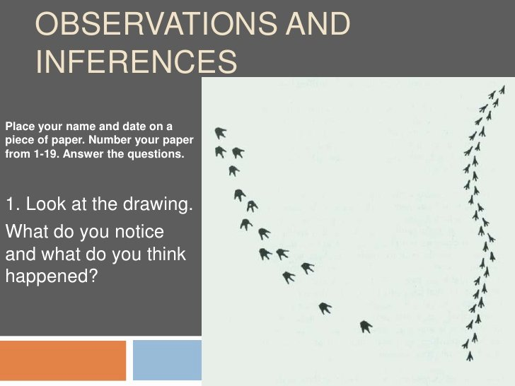 Observation and Inference Worksheet Elegant 1 Activity 1 Inquiryobservinference