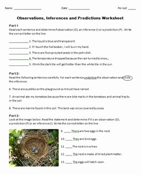 Observation and Inference Worksheet Elegant Observations Inferences and Predictions Worksheet by