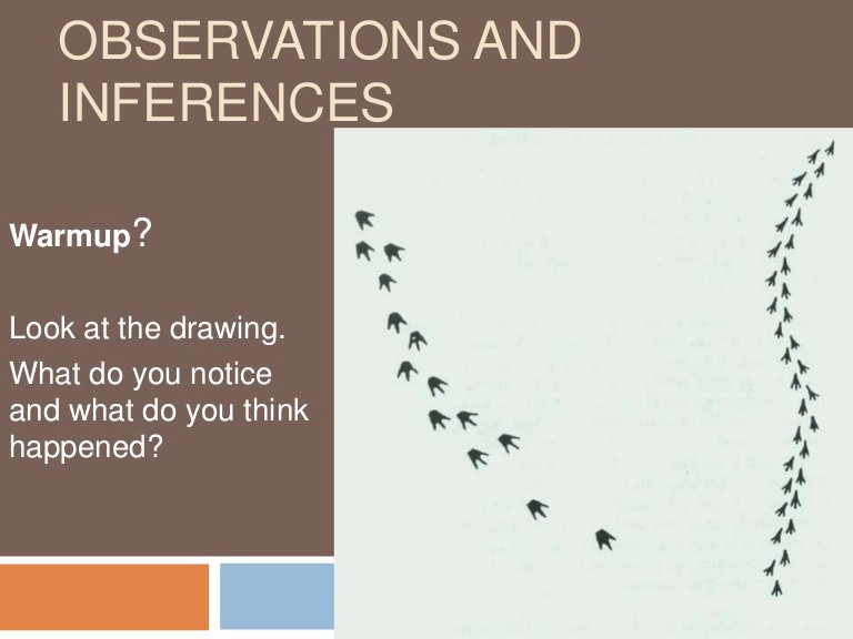 Observation Vs Inference Worksheet Best Of Observations and Inferences