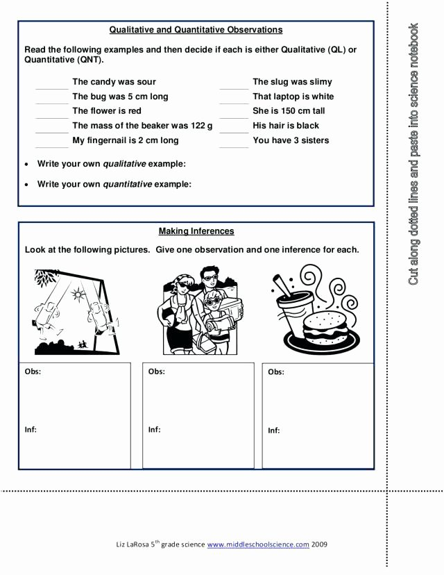 Observation Vs Inference Worksheet Elegant Observations and Inferences Worksheet