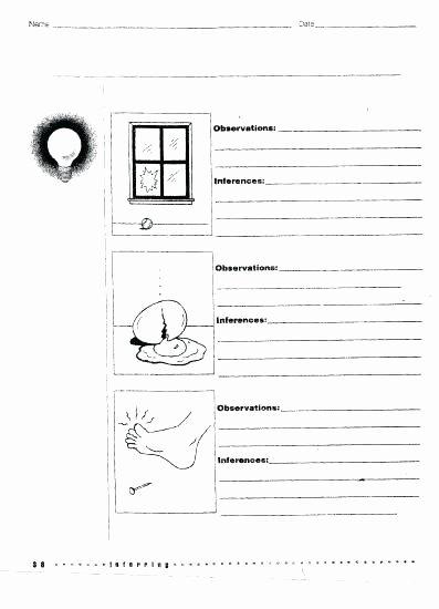 Observation Vs Inference Worksheet Luxury 20 Beautiful Observation Vs Inference Worksheet