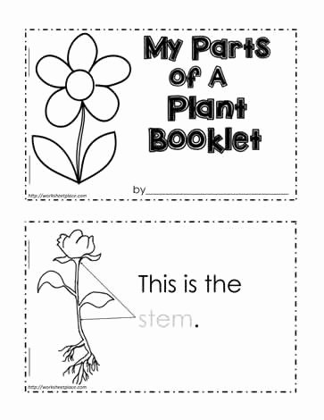 Ohm's Law Worksheet Answers Inspirational Parts Of A Plant Worksheet Worksheets