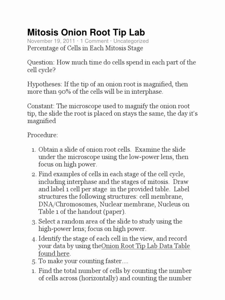 Onion Cell Mitosis Worksheet Answers Awesome Ion Cell Mitosis Worksheet Answers Root Tip Biology
