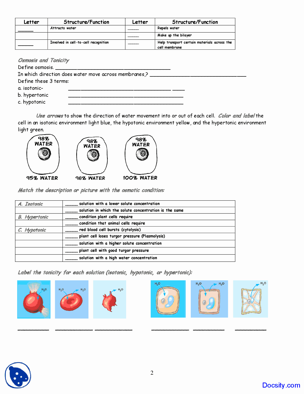 Osmosis and tonicity Worksheet Awesome Cell Membrane Coloring Application Of Biology