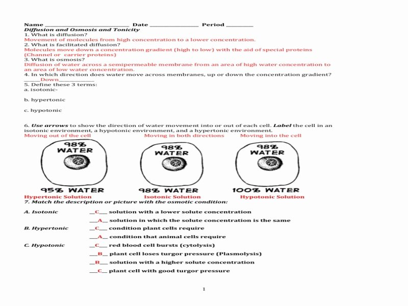 Osmosis and tonicity Worksheet Lovely Cell Membrane & tonicity Worksheet Free Printable Worksheets