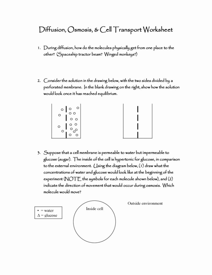 Osmosis and tonicity Worksheet Lovely Diffusion Worksheet
