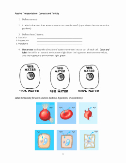 Osmosis and tonicity Worksheet Lovely Osmosis and tonicity Worksheet