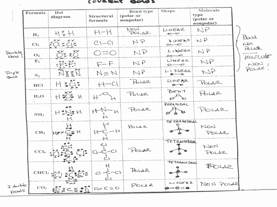 Overview Chemical Bonds Worksheet Answers Beautiful Collisions Momentum Worksheet 4 Answers