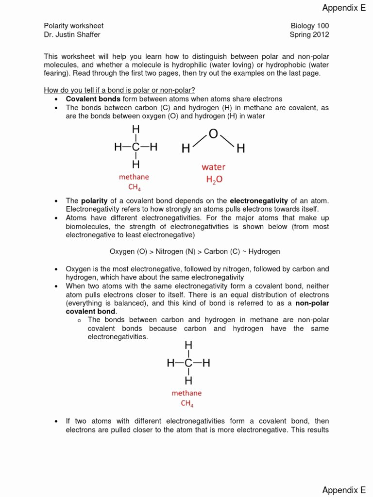 Overview Chemical Bonds Worksheet Answers New Polar and Nonpolar Molecules Worksheet