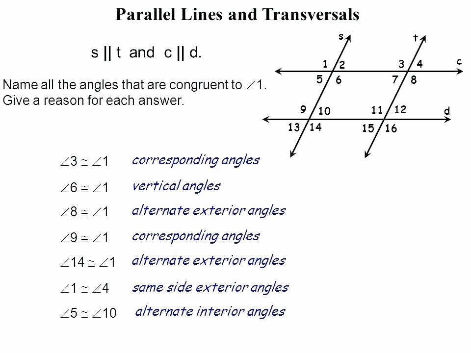 Parallel Lines Proofs Worksheet Answers Lovely Transversal and Parallel Lines Worksheets – Openlayers