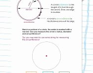 Parts Of A Circle Worksheet Elegant Circumference Radius and Diameter Explained