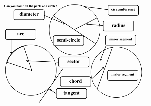 Parts Of A Circle Worksheet Inspirational Label Parts Of A Circle by Maths Tiger Teaching