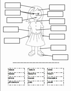 Parts Of A Map Worksheet Unique 1000 Images About Ipc who Am I On Pinterest