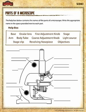 Parts Of A Microscope Worksheet Fresh Brain File Folder Game Homeschool Science