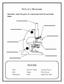 Parts Of A Microscope Worksheet Inspirational Label the Microscope Parts for Elementary School Students
