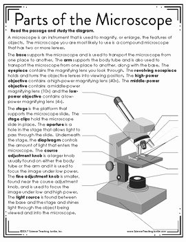 Parts Of A Microscope Worksheet Lovely Parts Of the Microscope Color by Number by Science