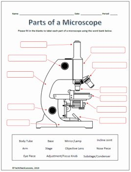 Parts Of A Microscope Worksheet Luxury Parts Of A Microscope Labeling Worksheet Science by