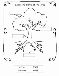 Parts Of A Tree Worksheet Awesome Parts Of Plants Worksheets