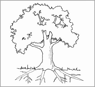 Parts Of A Tree Worksheet Beautiful Parts Of A Tree Labelling Worksheets Sb Sparklebox