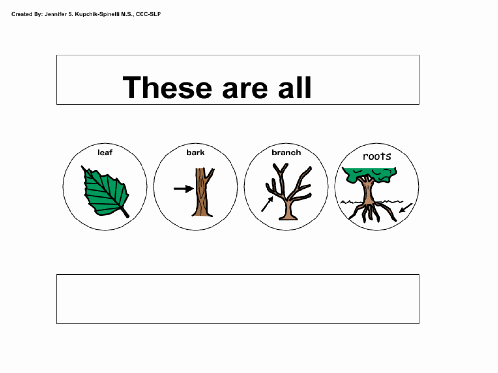 Parts Of A Tree Worksheet Fresh Parts Of A Tree Worksheet Worksheet for Kindergarten