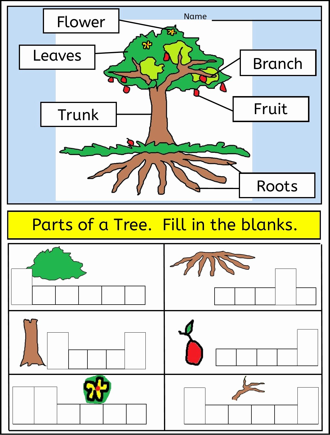 Parts Of A Tree Worksheet Luxury Worksheet Parts A Tree Worksheet Grass Fedjp