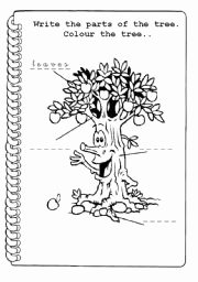 Parts Of A Tree Worksheet New Parts Of A Tree Worksheets