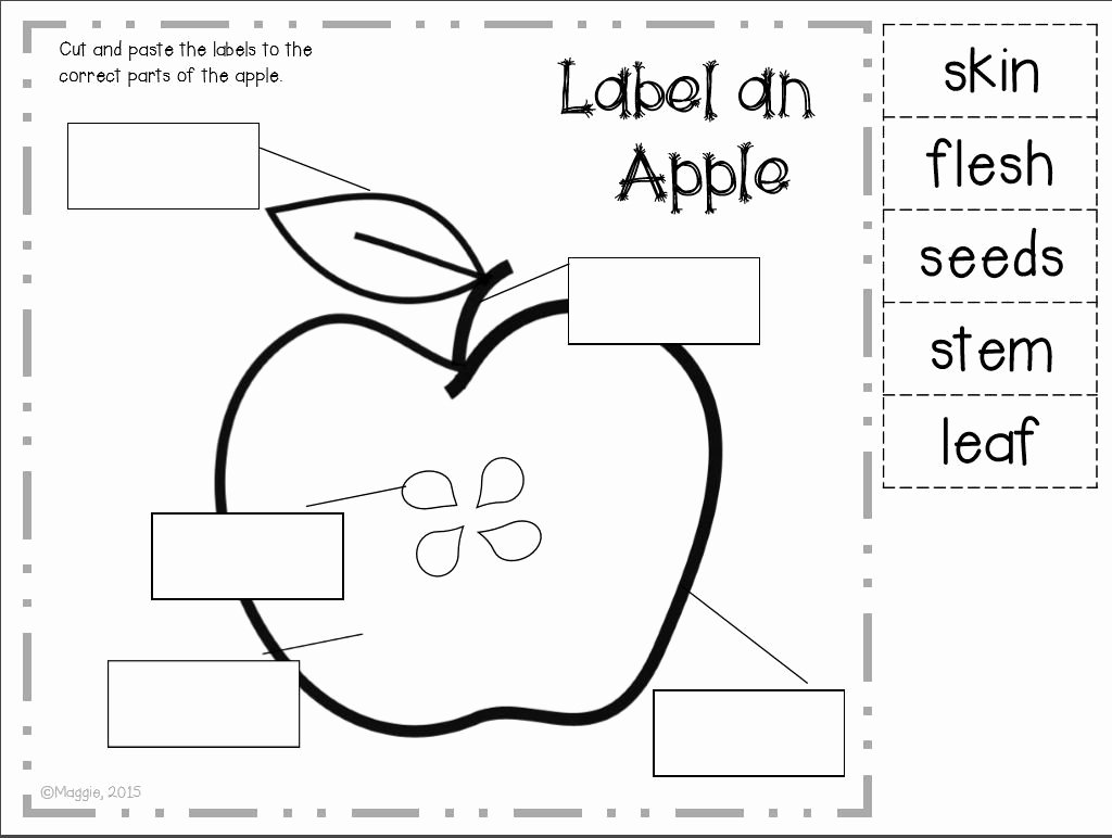 Parts Of An Apple Worksheet Elegant Ahhh Fall Love Pumpkins and Johnny Appleseed Freebies