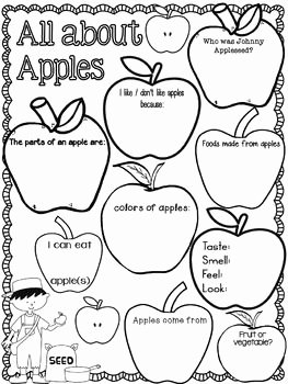 Parts Of An Apple Worksheet Lovely Pin On Lesson Plans 9 17 9 21 theme Apples