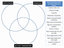 diffusion osmosis active transport venn puzzle