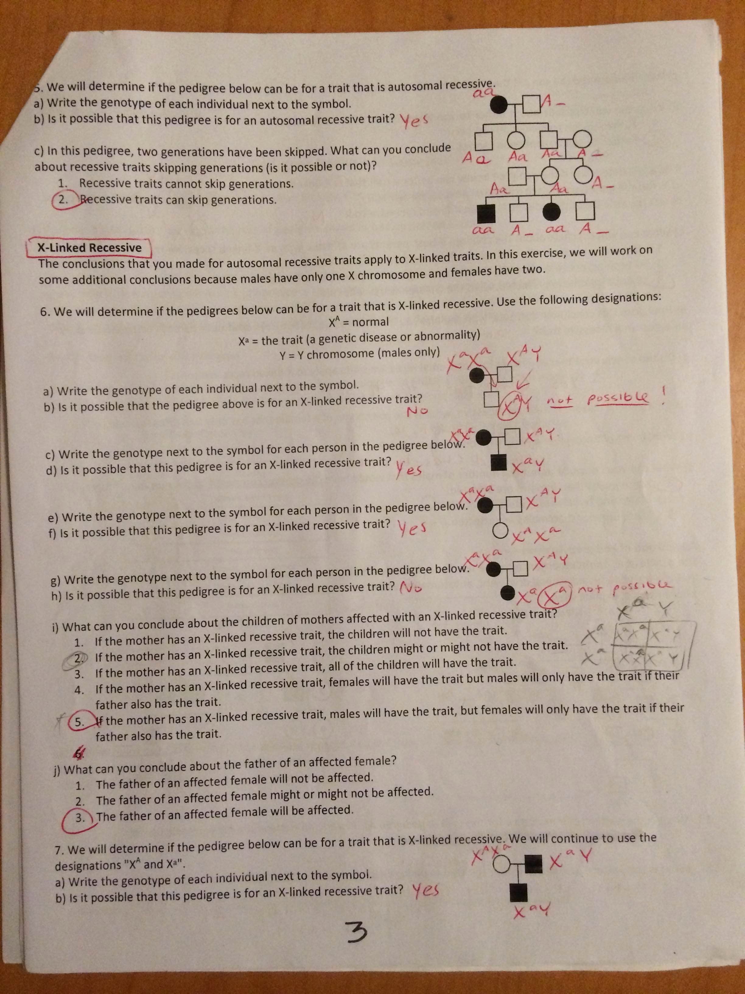 Pedigree Worksheet Answer Key Awesome Key Pedigree Analysis Worksheet Mrs Paulik S Website