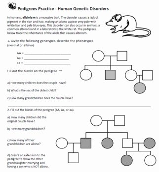 Pedigree Worksheet Answer Key Awesome Pedigree Practice Worksheets with Answers