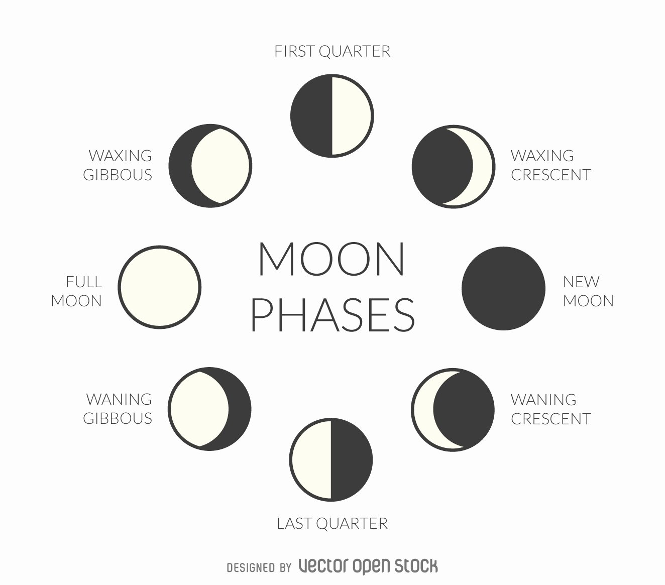 Phases Of the Moon Worksheet Best Of Spouting About 1st Grade