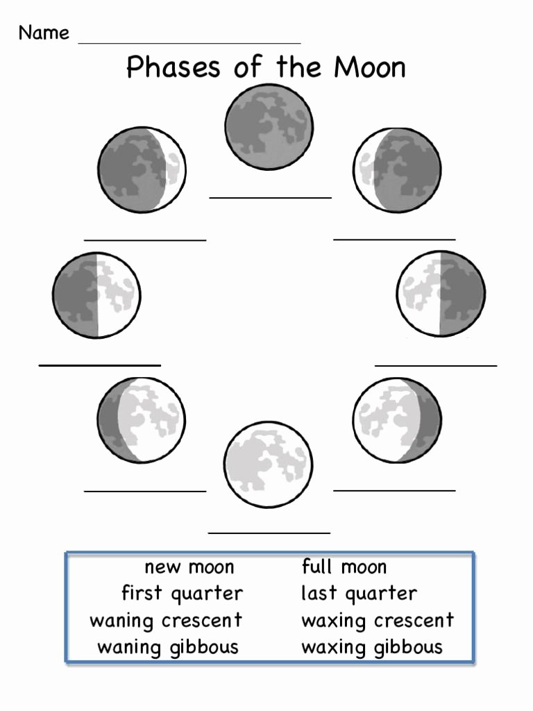 Phases Of the Moon Worksheet Elegant This is A Worksheet to Show the Phases Of the Moon