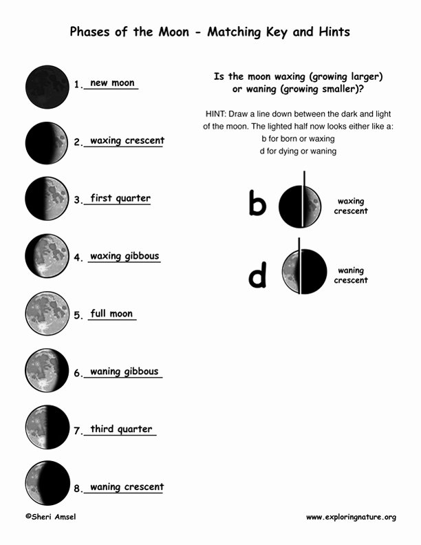 Phases Of the Moon Worksheet Lovely Phases Of the Moon Explained