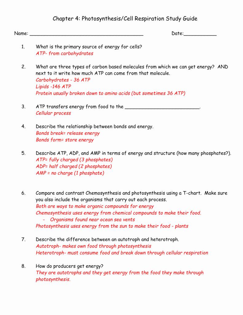 Photosynthesis and Respiration Worksheet Answers Elegant 81 Energy and Life Worksheet Answer Key